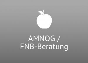 AMNOG / FNB - Beratung