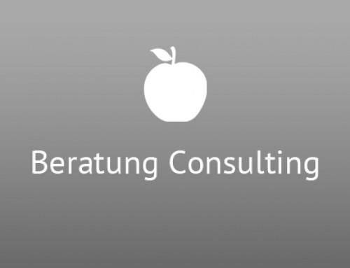 Beratung Consulting