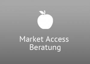 Market Access Beratung