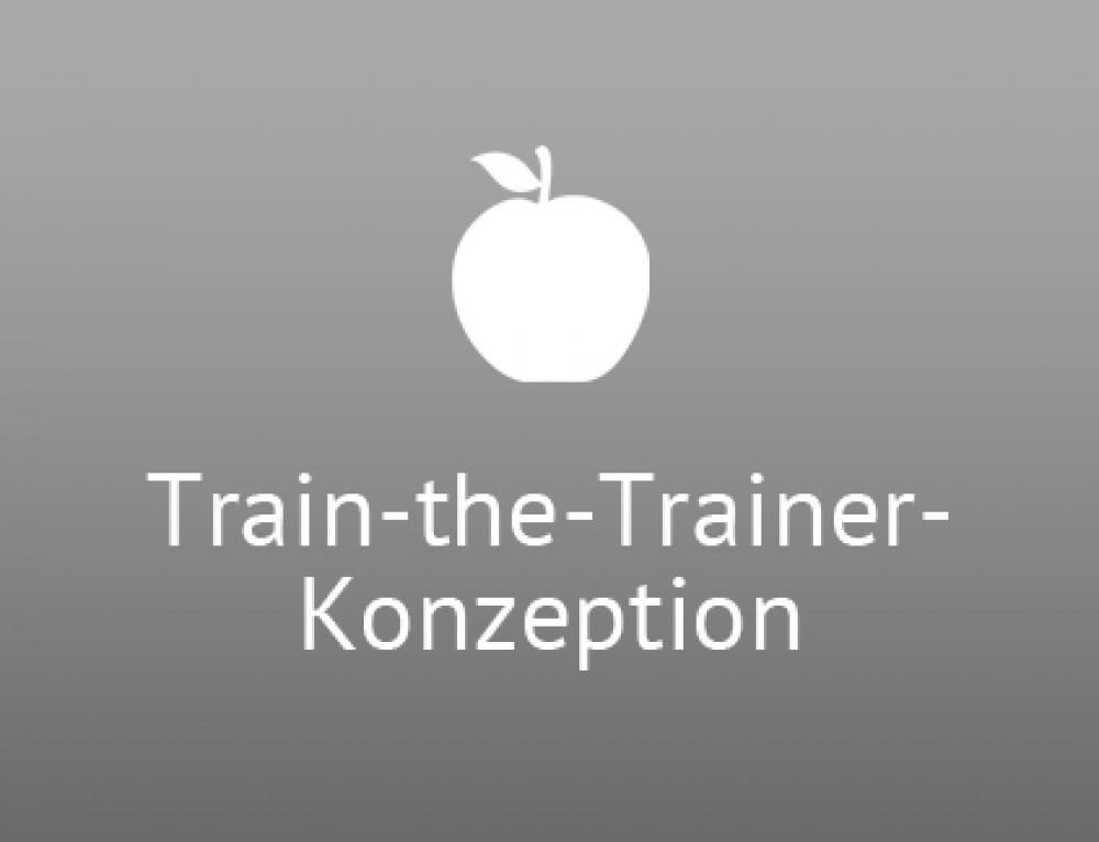 Train-the-Trainer-Konzeption